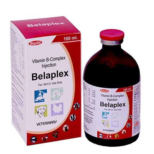 VITAMIN B-COMPLEX-100ml Liq.Injection(Vet.)