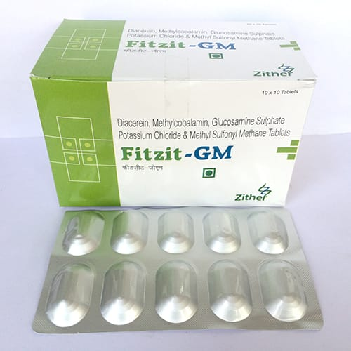 FITZIT-GM Tablets