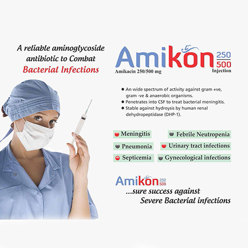 AMIKON-250/500mg Injection